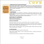 Consulting Lopd