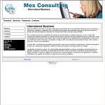 Mes Consulting