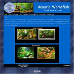 Acuario worldfish